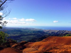 usa-kauai-downhill-bike-tour-aussicht