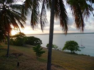Palmen und Lagune in der Nähe von Pipa