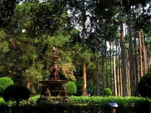 Die Ruhe im botanischen Garten genießen