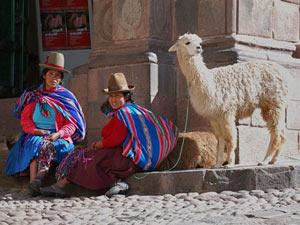 Locals met lama Cusco