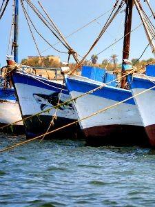 Vissersboten in Paracas