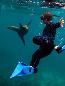galapagos-reis-snorkelen