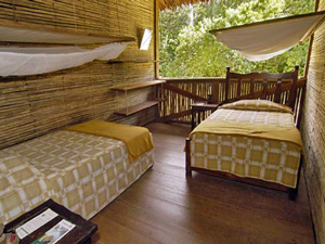 Hotel jungle - Peru compleet