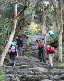Beklimming Inca Trail