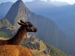 Reisinformatie Peru - Machu Picchu