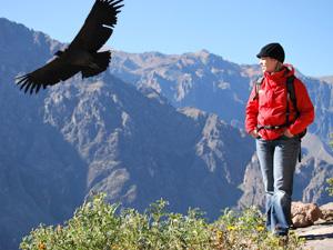 Peru reizen - Colca Canyon