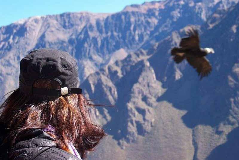 Condor Peru vakantie
