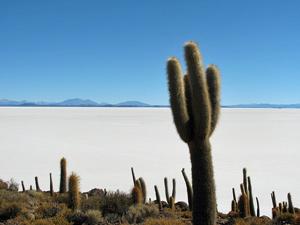 Rondreis Bolivia - Pescadores