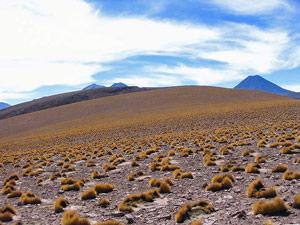 San Pedro - Peru, Bolivia en Chili reis