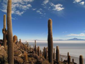 Zoutvlakten - Bolivia en Peru reizen