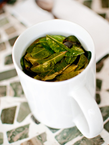 Hoogteziekte Peru, coca thee