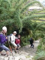 peru inca trail trappen
