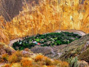 Oase-colca-canyon