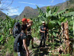 Inca-jungle-trek-hike