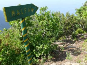 Wanderung Sizilien Malfa Salina Tour