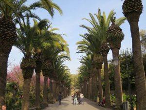 Italien Sizilien Rundreise Ragusa Park