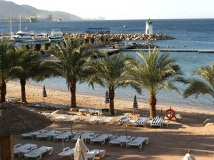 Der palmengesäumte Strand am Roten Meer