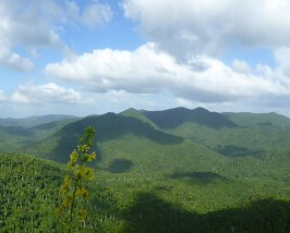Soroa Landschaft