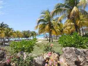 Garten vor dem Strand