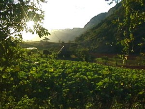 Sonnenuntergang in Viñales