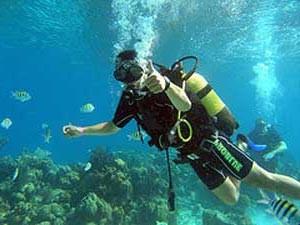 Taucher in der Unterwasserwelt