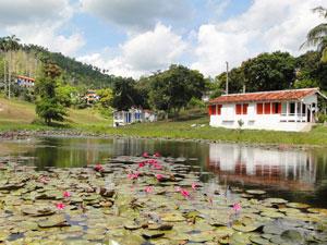 See in Las Terrazas