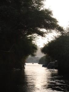aegypten-assuan-nil-natur