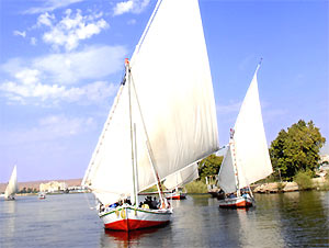 Felukka Fahrt auf dem Nil