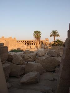 Palmen in Luxor vor dem Karnak-Tempel