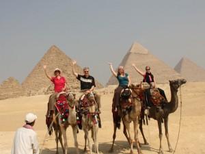 kairo-huehner-auf-kamel