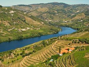 entlang der Weinberge und dem Douro