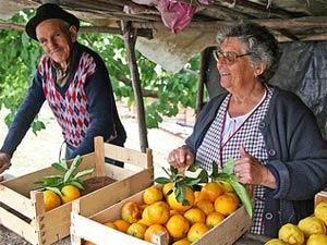 Orangen kaufen bei einer Portugal Mietwagenrundreise