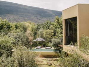 Pool-Erholung-Alvados-Cooking-Natur