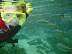 brazilie bonito snorkelen