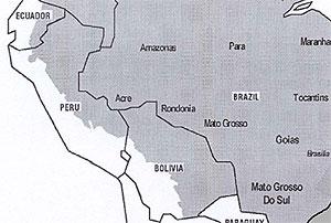 gelekoorts gebied brazilie