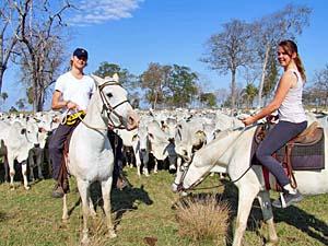 natuurreizen brazilie paarden