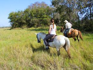 brazilie paardrijden pantanal