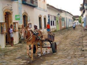 rondreis Zuid Brazilië - ezel met wagen