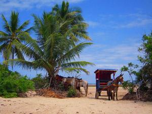 Tinharé strand reizen Brazilie