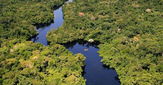 Brazilië reis: Amazone