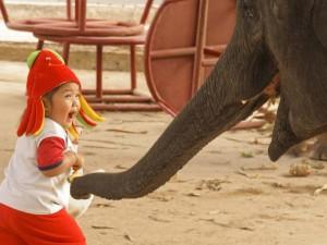 ayutthaya-elefant-kind-lachen
