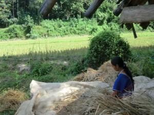 2-Wochen-Thailand-Einheimische