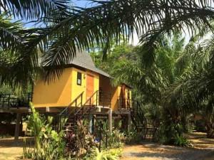 Ihr Haus im thailändischen Regenwald