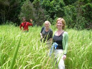 Unterwegs in den grünen Feldern des Khao Yai Nationalpark