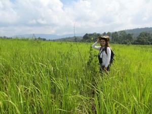 Thailand Kambodscha Rundreise - Trekking im grünen Khao Yai Nationalpark