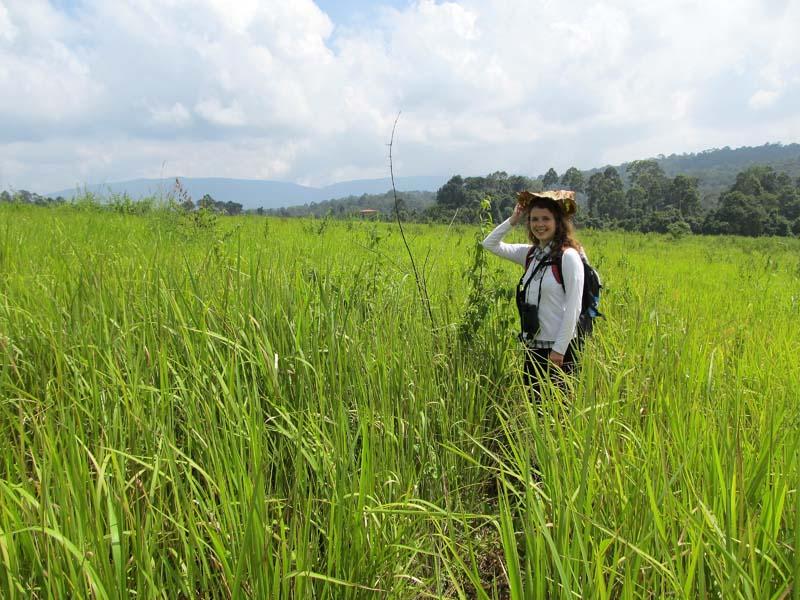 Ein Trekking in Thailand unternehmen