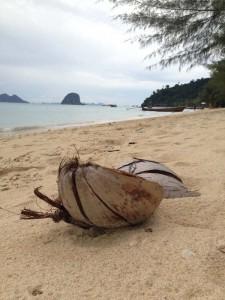 koh-ngai-kokosnuss-strand
