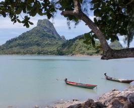Longtailboote am Strand von Koh Phangan