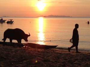 Rundreise Thailand 2 Wochen Sonnenuntergang