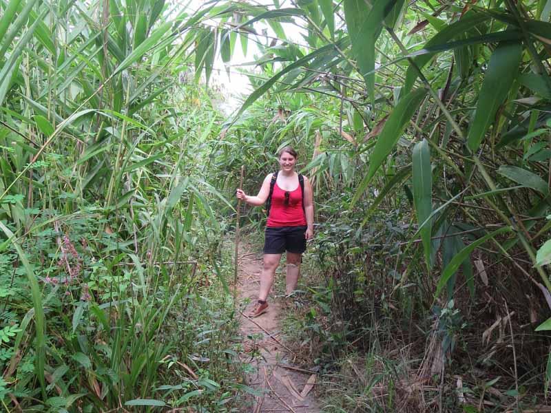 Trekking Natur Norden Thailand Urlaub